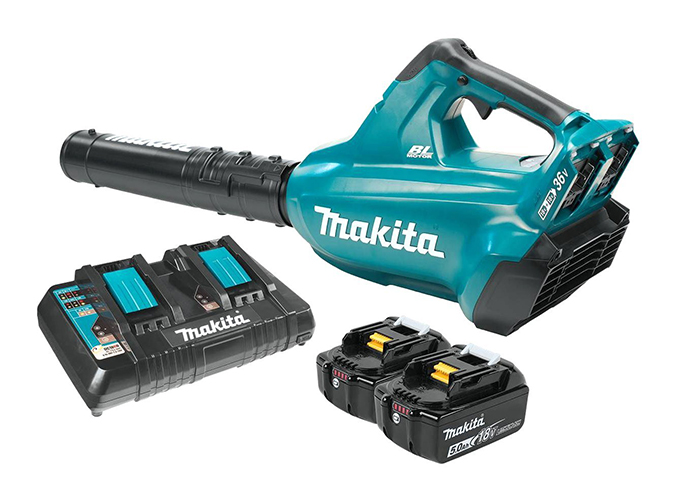 Top 10 Best Cordless Blower in 2020 Reviews
